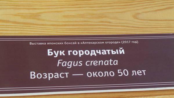 http://s2.uploads.ru/t/CRWsc.jpg