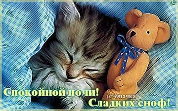 http://s2.uploads.ru/t/CiTeb.jpg
