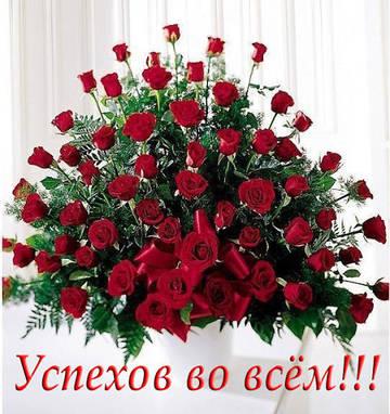 http://s2.uploads.ru/t/CvGJh.jpg