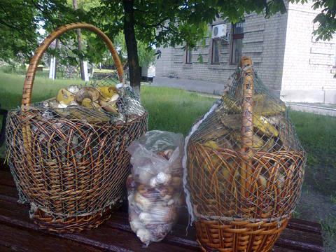 http://s2.uploads.ru/t/CzHbO.jpg