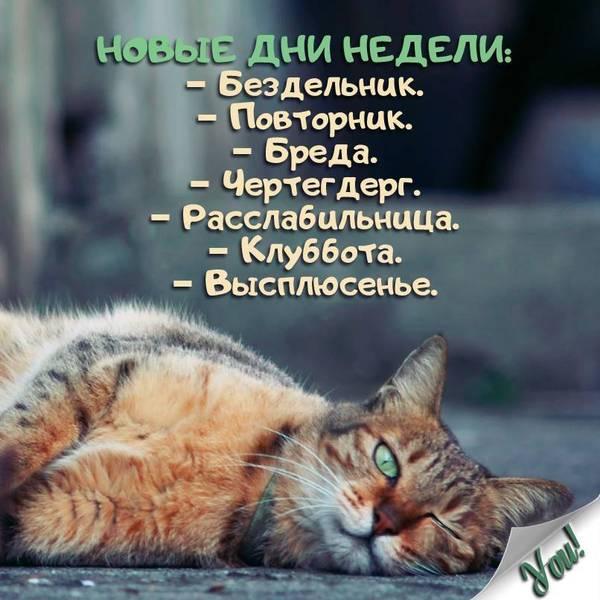 http://s2.uploads.ru/t/DvMaC.jpg