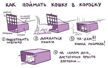 http://s2.uploads.ru/t/Dxw6N.jpg