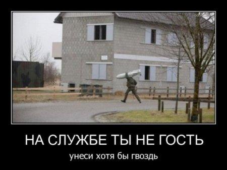 http://s2.uploads.ru/t/EQvcd.jpg