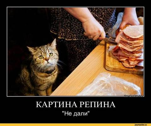 http://s2.uploads.ru/t/EZ8NO.jpg