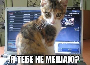 http://s2.uploads.ru/t/EqtM5.jpg