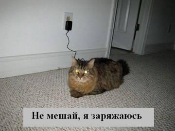 http://s2.uploads.ru/t/Fa9oz.jpg