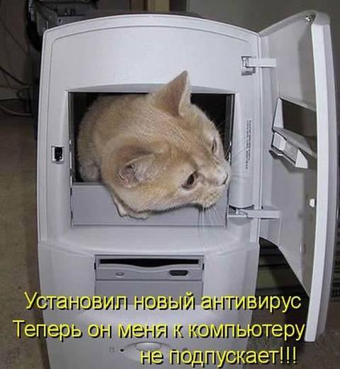 http://s2.uploads.ru/t/FdJYH.jpg
