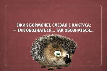 http://s2.uploads.ru/t/Felp4.jpg