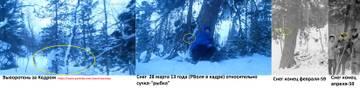 http://s2.uploads.ru/t/Fwtb9.jpg