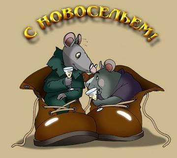 http://s2.uploads.ru/t/G62vg.jpg