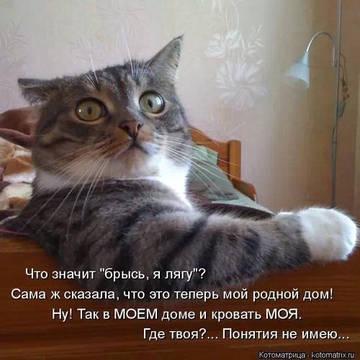 http://s2.uploads.ru/t/G8AgV.jpg