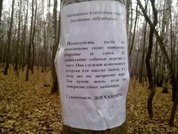http://s2.uploads.ru/t/GdS7F.jpg