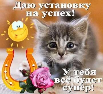 http://s2.uploads.ru/t/Gf8CQ.jpg