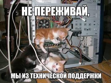 http://s2.uploads.ru/t/GiP3L.jpg