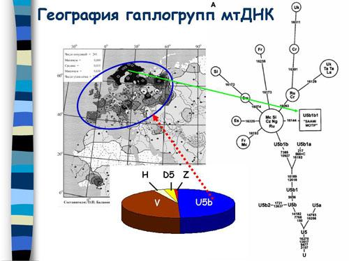 http://s2.uploads.ru/t/HK2lv.jpg