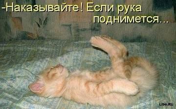 http://s2.uploads.ru/t/I8JiN.jpg