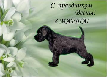http://s2.uploads.ru/t/IFp4d.jpg