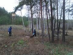 http://s2.uploads.ru/t/IHkoi.jpg