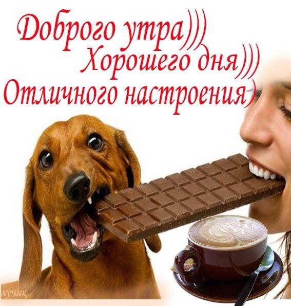 http://s2.uploads.ru/t/ISLvE.jpg