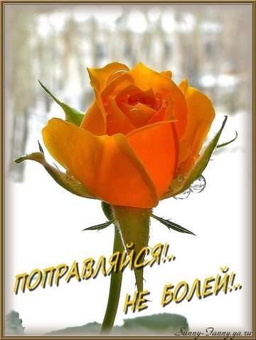 http://s2.uploads.ru/t/IZHkO.jpg