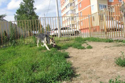 http://s2.uploads.ru/t/JOq2h.jpg