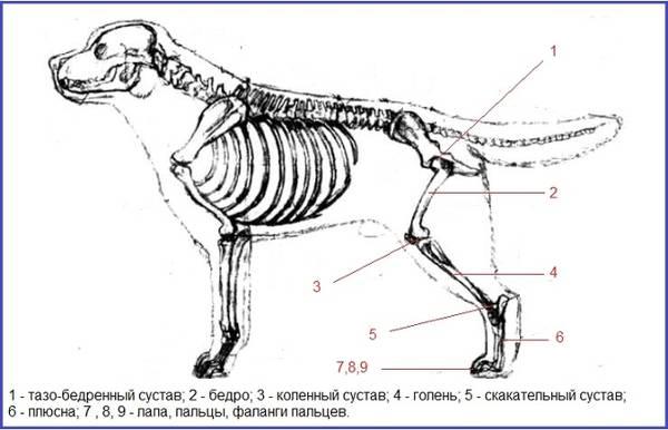 http://s2.uploads.ru/t/JeN9a.jpg