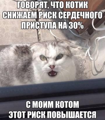 http://s2.uploads.ru/t/KWPld.jpg