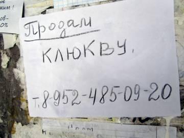 http://s2.uploads.ru/t/Kecsv.jpg