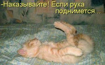 http://s2.uploads.ru/t/KwY39.jpg