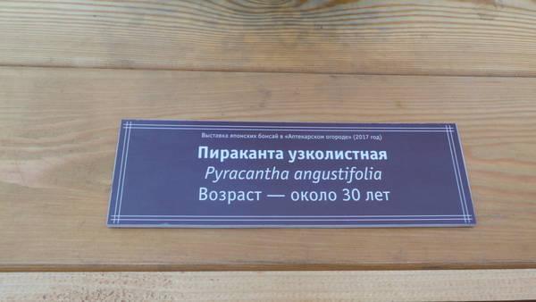 http://s2.uploads.ru/t/LG4Jp.jpg