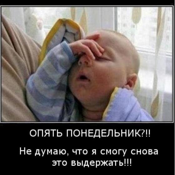 http://s2.uploads.ru/t/MAy4w.jpg