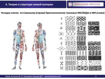 http://s2.uploads.ru/t/MCcoy.jpg
