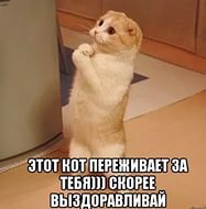 http://s2.uploads.ru/t/MDOlr.jpg