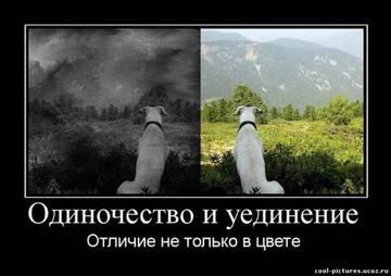 http://s2.uploads.ru/t/MX5ln.jpg