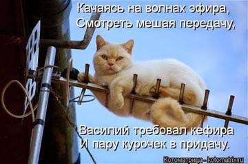 http://s2.uploads.ru/t/MdNLQ.jpg