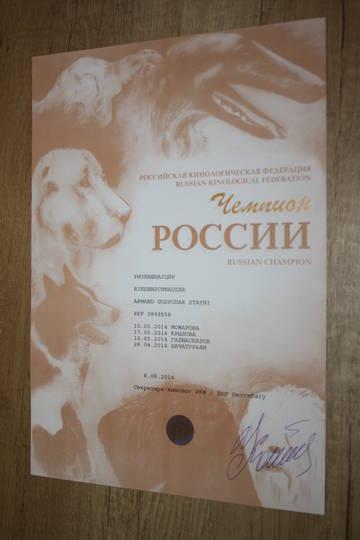http://s2.uploads.ru/t/MyCrb.jpg
