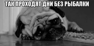 http://s2.uploads.ru/t/NUOZ0.jpg