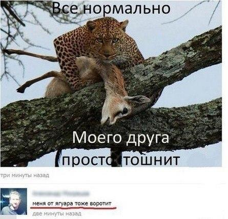 http://s2.uploads.ru/t/Nfv08.jpg
