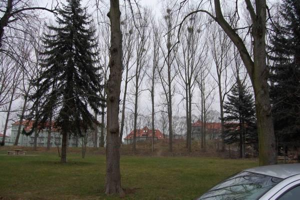 http://s2.uploads.ru/t/NjtXB.jpg