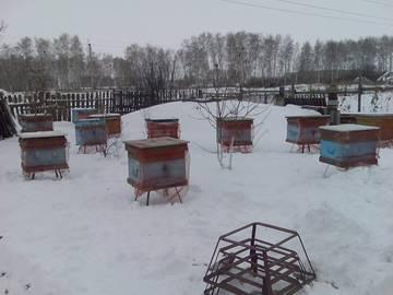 http://s2.uploads.ru/t/NzJju.jpg