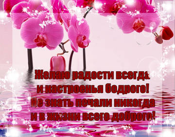 http://s2.uploads.ru/t/OVzeb.jpg