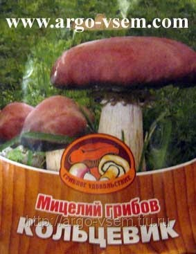 http://s2.uploads.ru/t/OZBDx.jpg