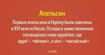 http://s2.uploads.ru/t/P8jle.jpg