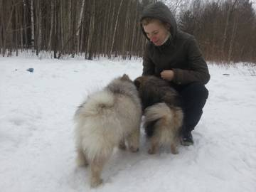 http://s2.uploads.ru/t/PLodJ.jpg