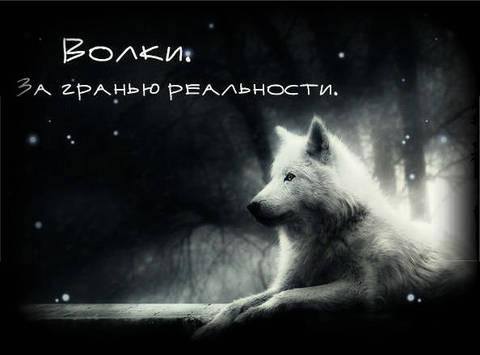 http://s2.uploads.ru/t/PoqGg.jpg
