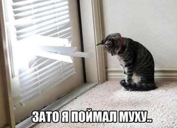 http://s2.uploads.ru/t/QI7fx.jpg