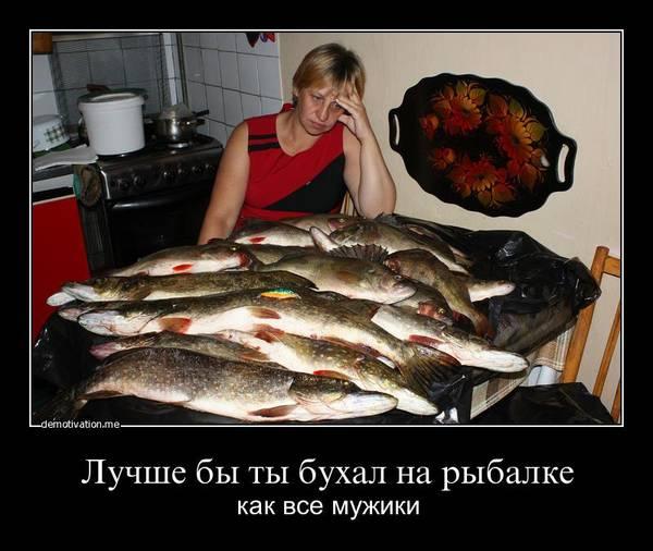http://s2.uploads.ru/t/QJfej.jpg