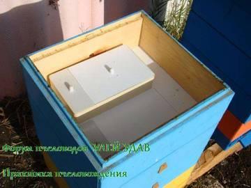 http://s2.uploads.ru/t/QTeCx.jpg