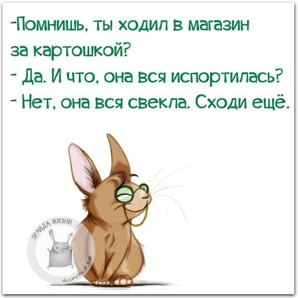 http://s2.uploads.ru/t/QaXID.jpg
