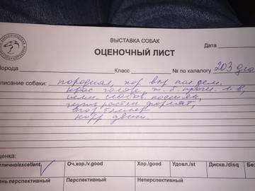 http://s2.uploads.ru/t/QaYen.jpg